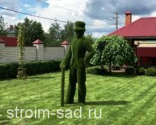 Топиари Джентельмен