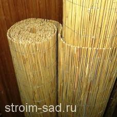 Тростниковые маты(однослойные) 1.6х6.0, шт