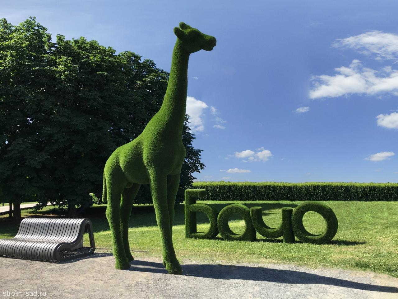 Топиари Жираф