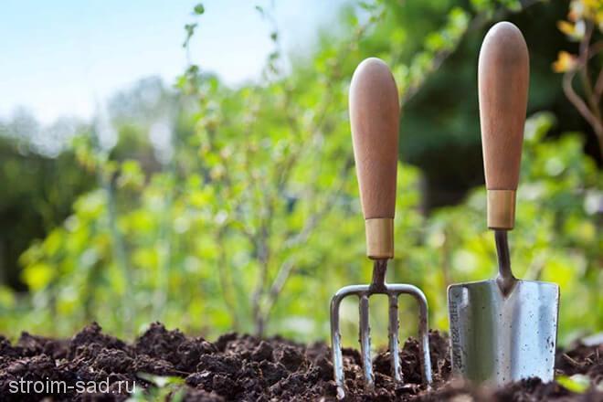Эффективные средства от сорняков