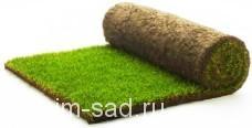 Рулонный газон «Премиум» ,м2