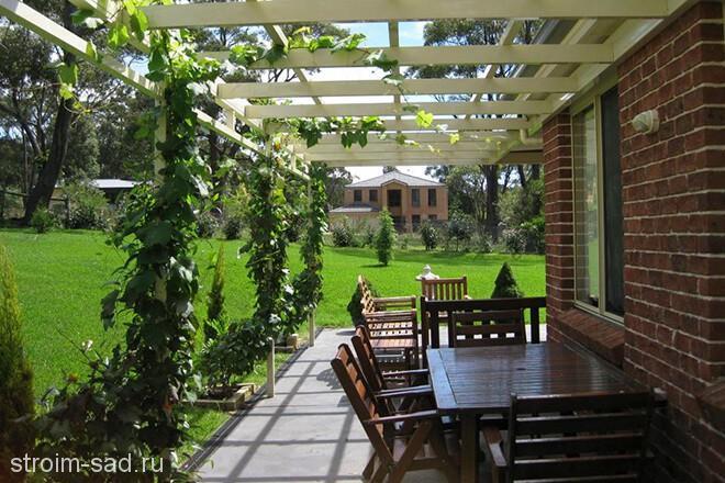 Перголы и шпалеры для сада