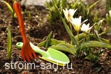 Удобрения и препараты для ухода за растениями: основные виды