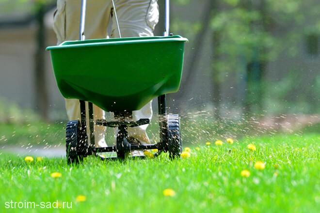 удобрение для газонов